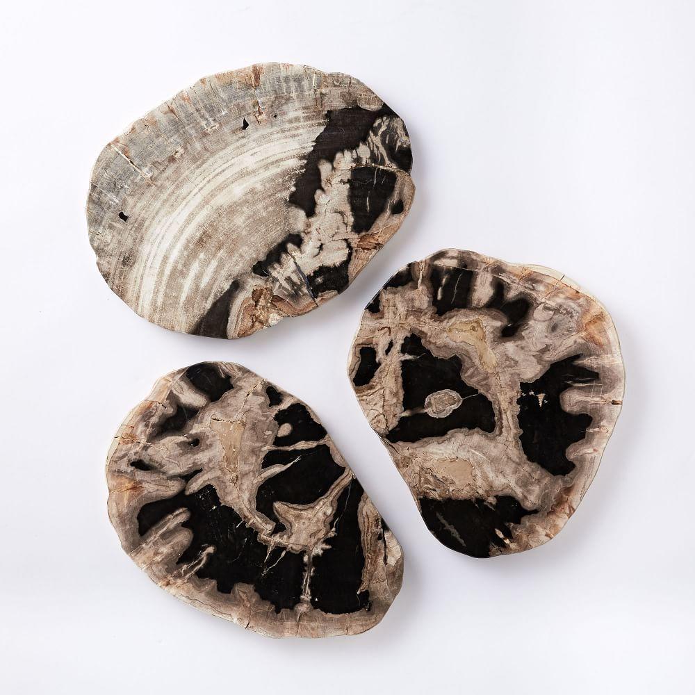 Petrified Wood Cheese Board