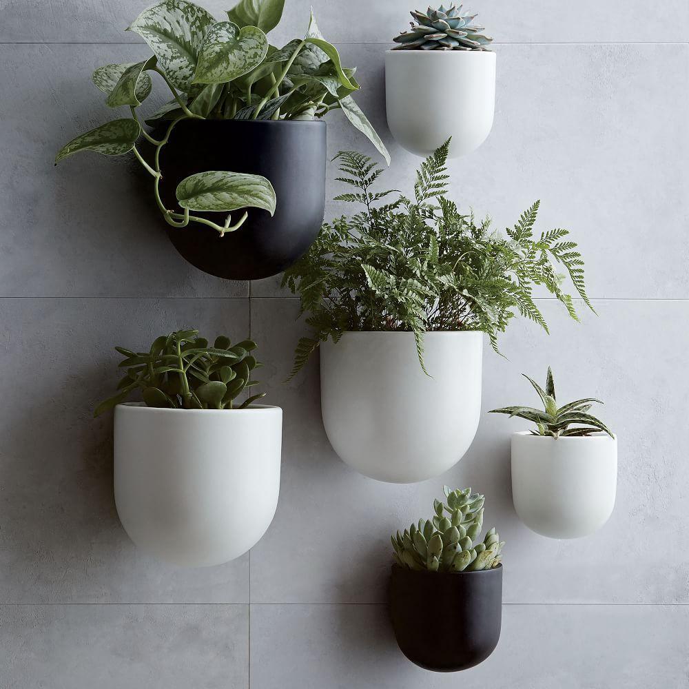 Ceramic Wallscape Planters West Elm Australia
