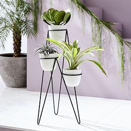 Iris Planter + Chevron Stand - Triple