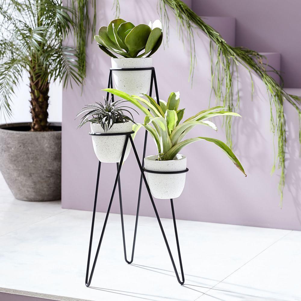 iris planter chevron stand triple west elm australia. Black Bedroom Furniture Sets. Home Design Ideas