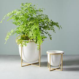 Eden Cross Base Tabletop Planters