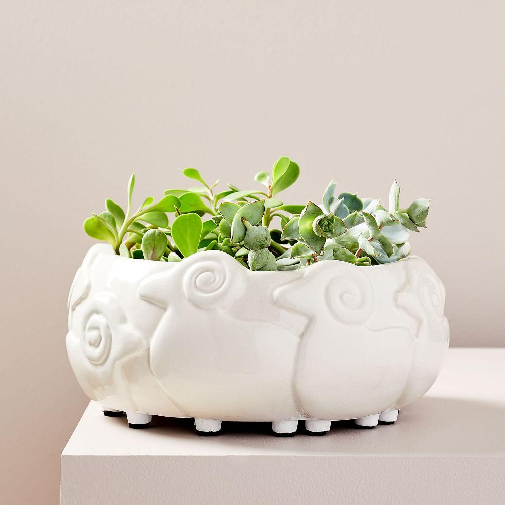 Ceramic Flock of Sheep Planter