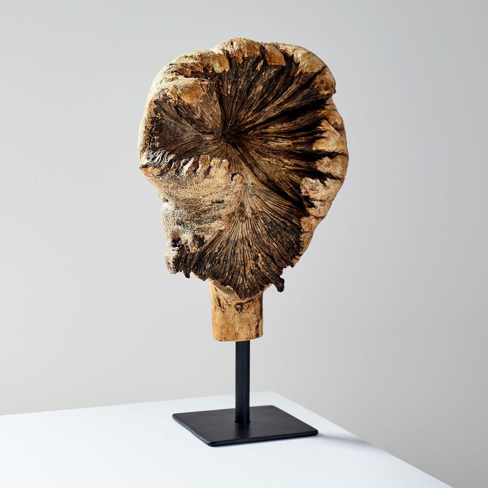 Wood Tree Ear Object on Stand