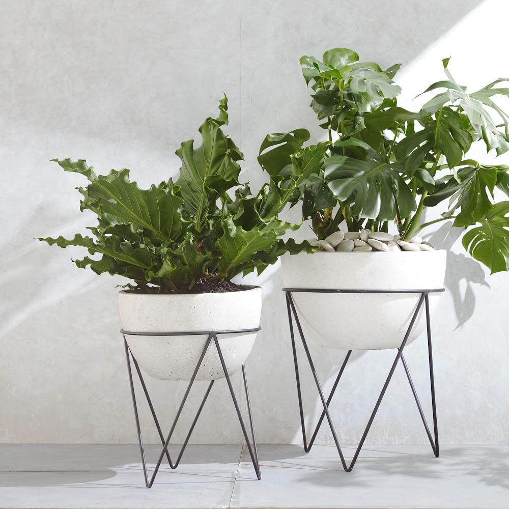 Incredible Planter Boxes Terrariums West Elm Australia Download Free Architecture Designs Jebrpmadebymaigaardcom