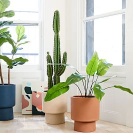Indoor Planters + Terrariums
