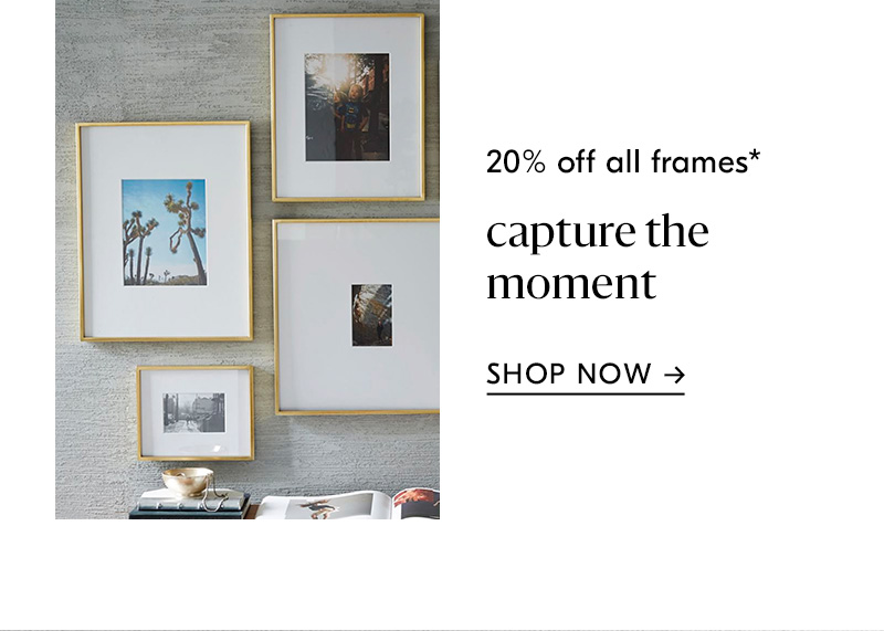 20% off all frames