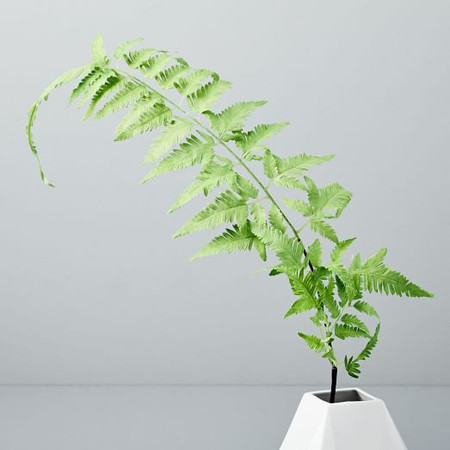 Faux Botanicals - Small Fern