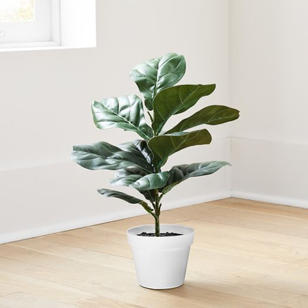 Faux Potted Fig Leaf - 56 cm